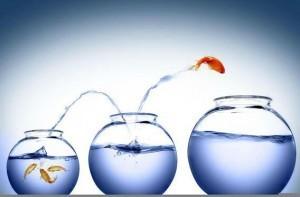 ambitie so perseverenta poveste cu talc