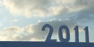 idei bune 2011