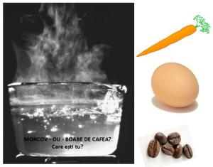 povesti cu talc despre succes - oul, morcovul si boabele de cafea