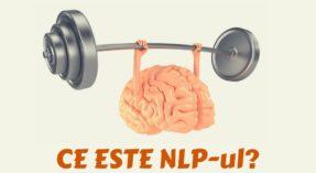 NLP – Programare Neurolingvistica pe intelesul tuturor